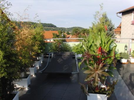 Wohnung mit Dachterrasse und Dachgarten zur Erholung in der Großstadt ...